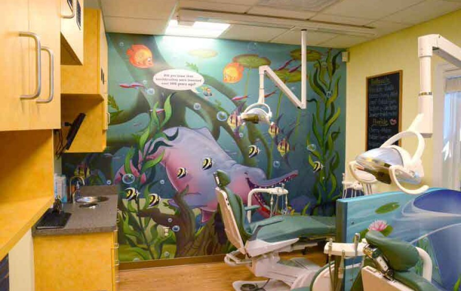 Newton-Sparta Pediatric Dentistry and Orthodontics - Operatory